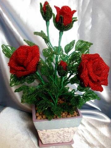 biseropletenie-rozi